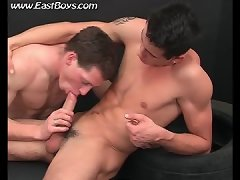Porn Boys, Gay Twinks Asses